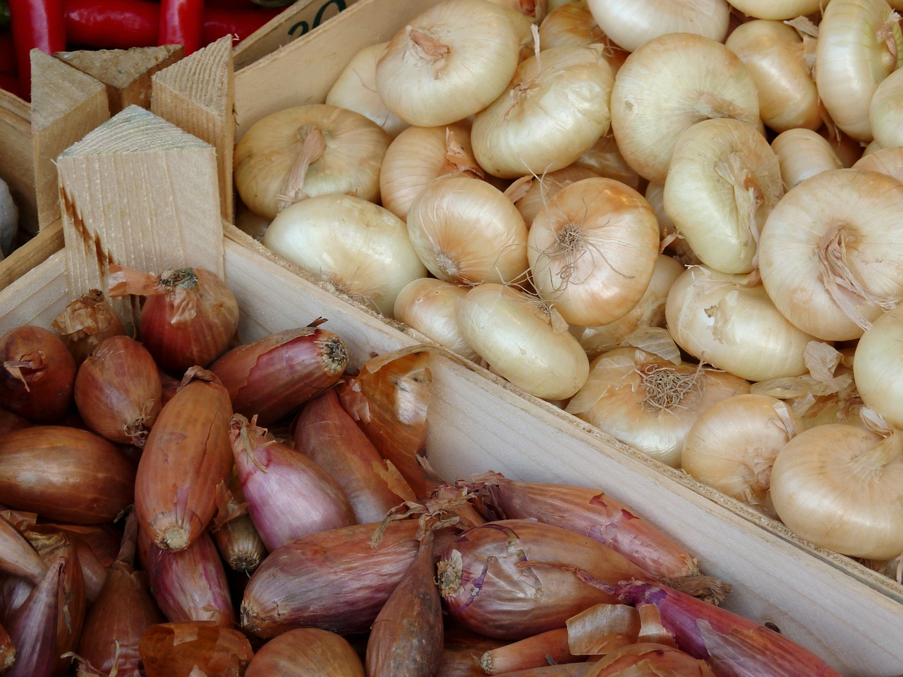 onion,vegetables,market,food,vegetable onion,spring onion,plant,leek,market fresh vegetables,red onions vegetables,free pictures, free photos, free images, royalty free, free illustrations, public domain