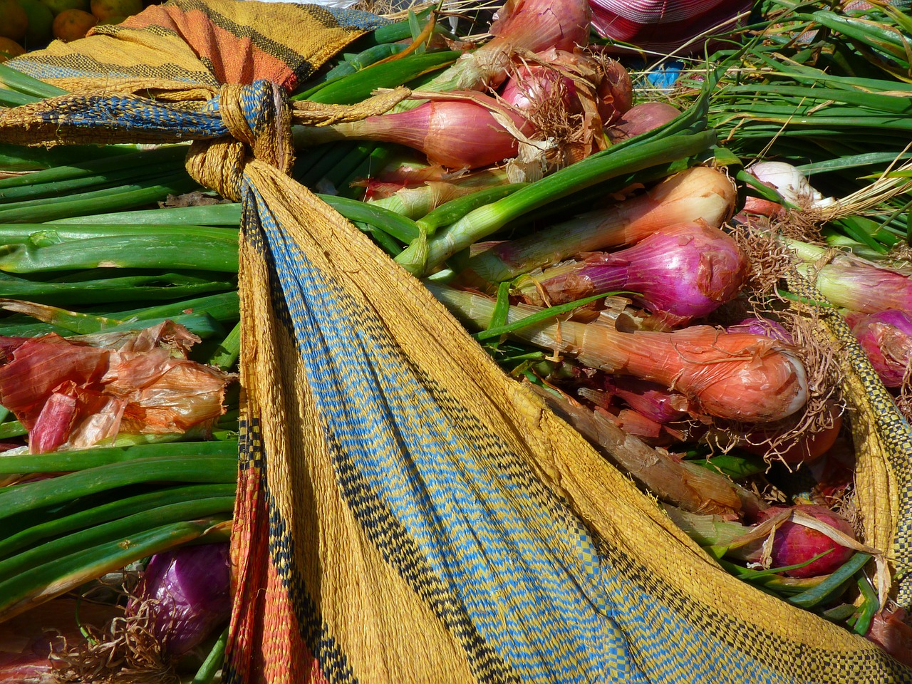 onion leek vegetables free photo