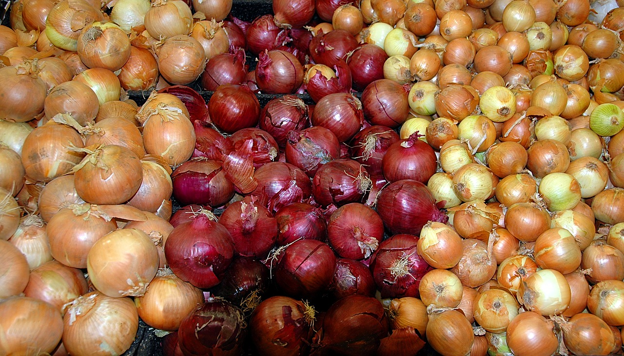 onions background market free photo