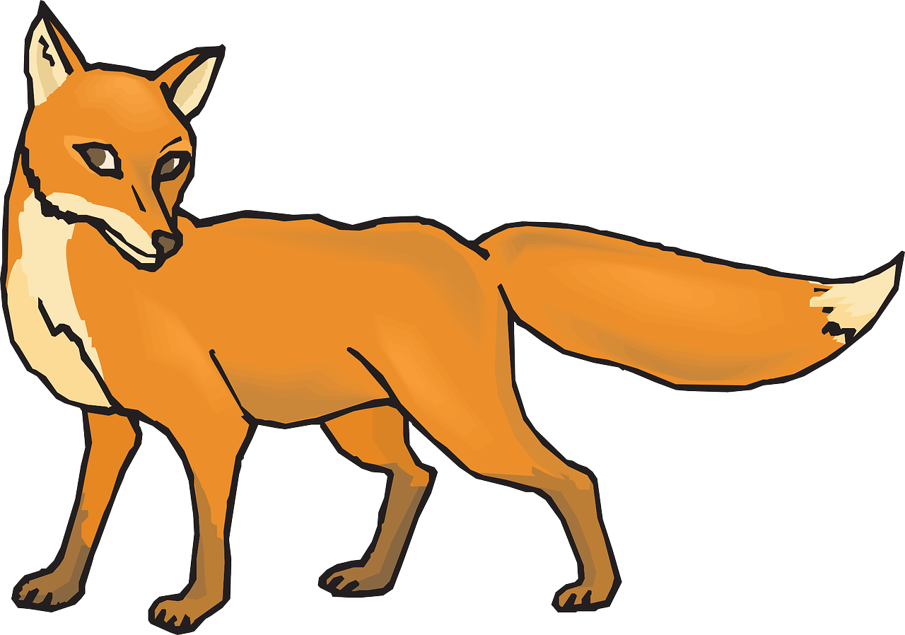 orange fox animal free photo