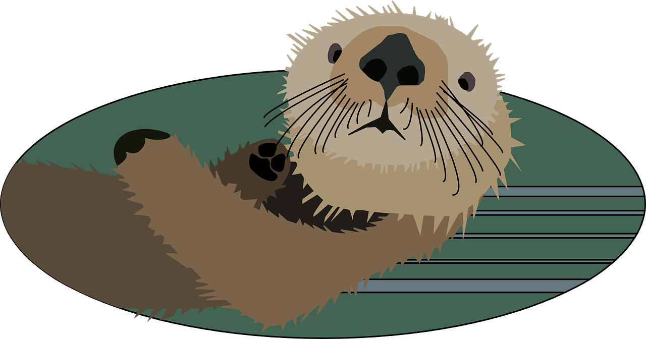 otter animal mammal free photo