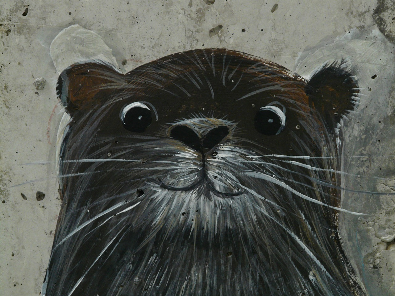 otter drawing image free photo