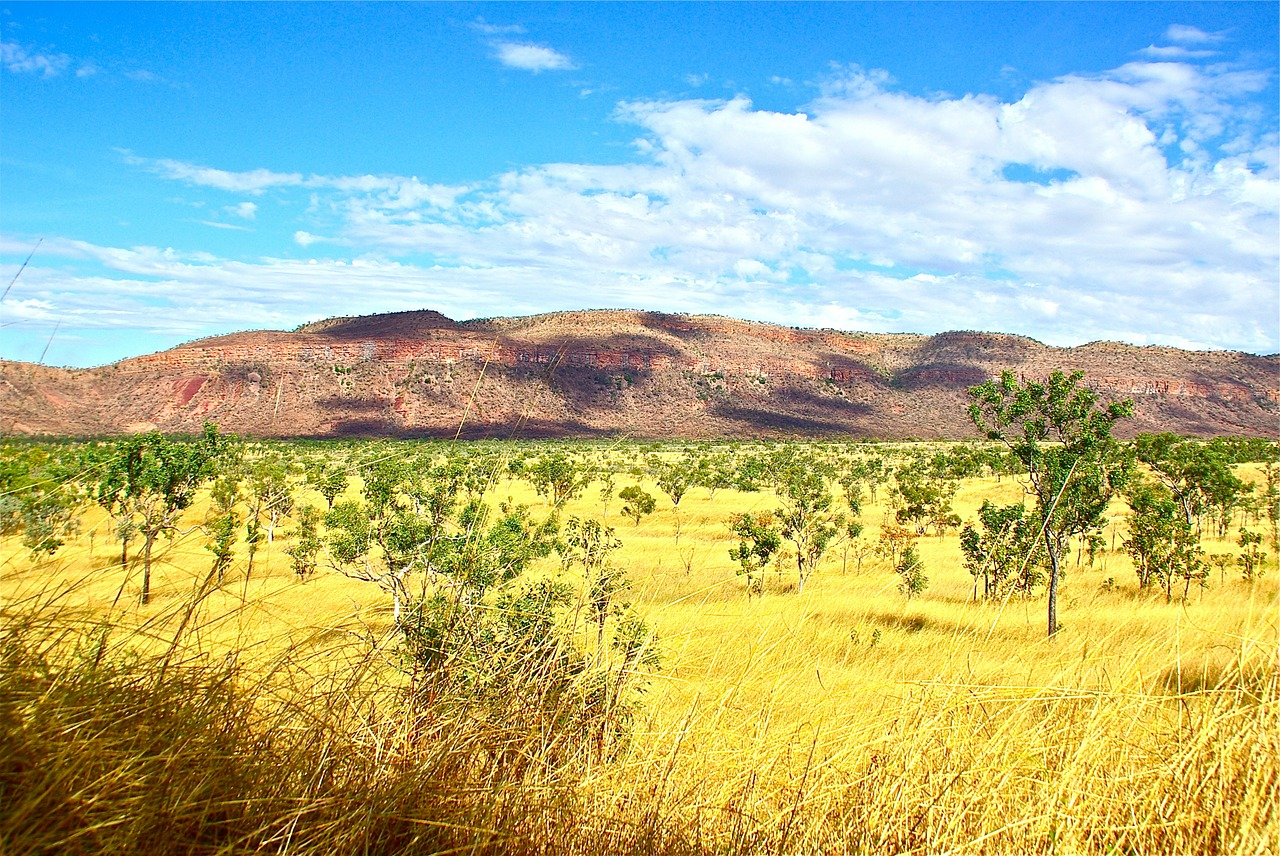 outback australia rural free picture