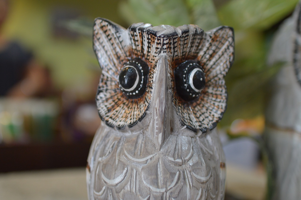 owl gift souvenirs free photo
