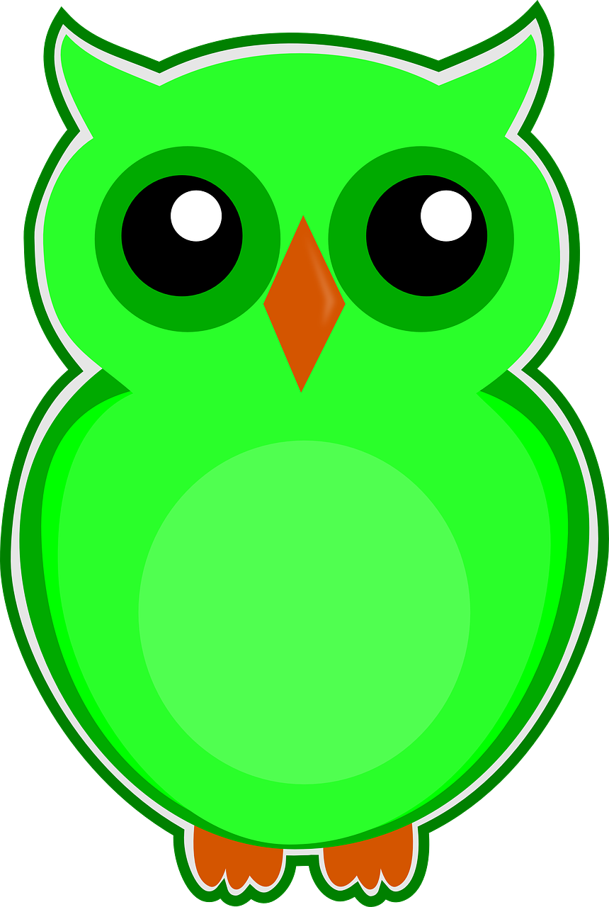 owl green bird free picture