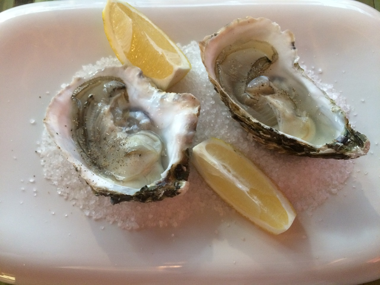 oysters dish food free photo