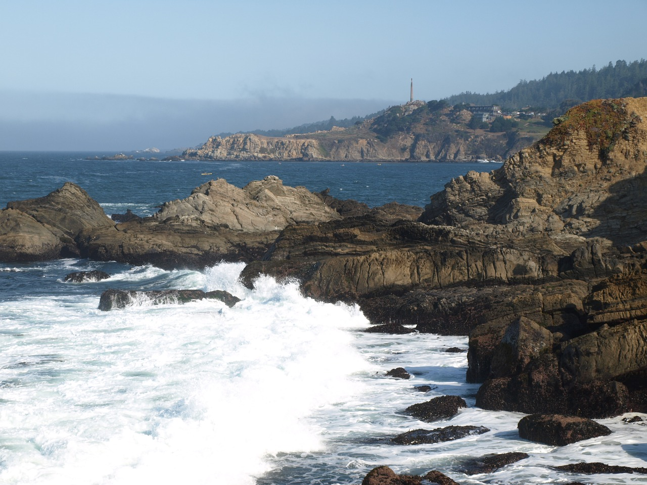 pacific coast rock free picture