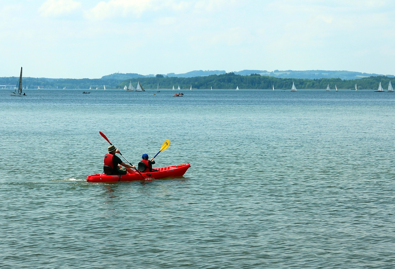 paddle canoeing canoeist free photo