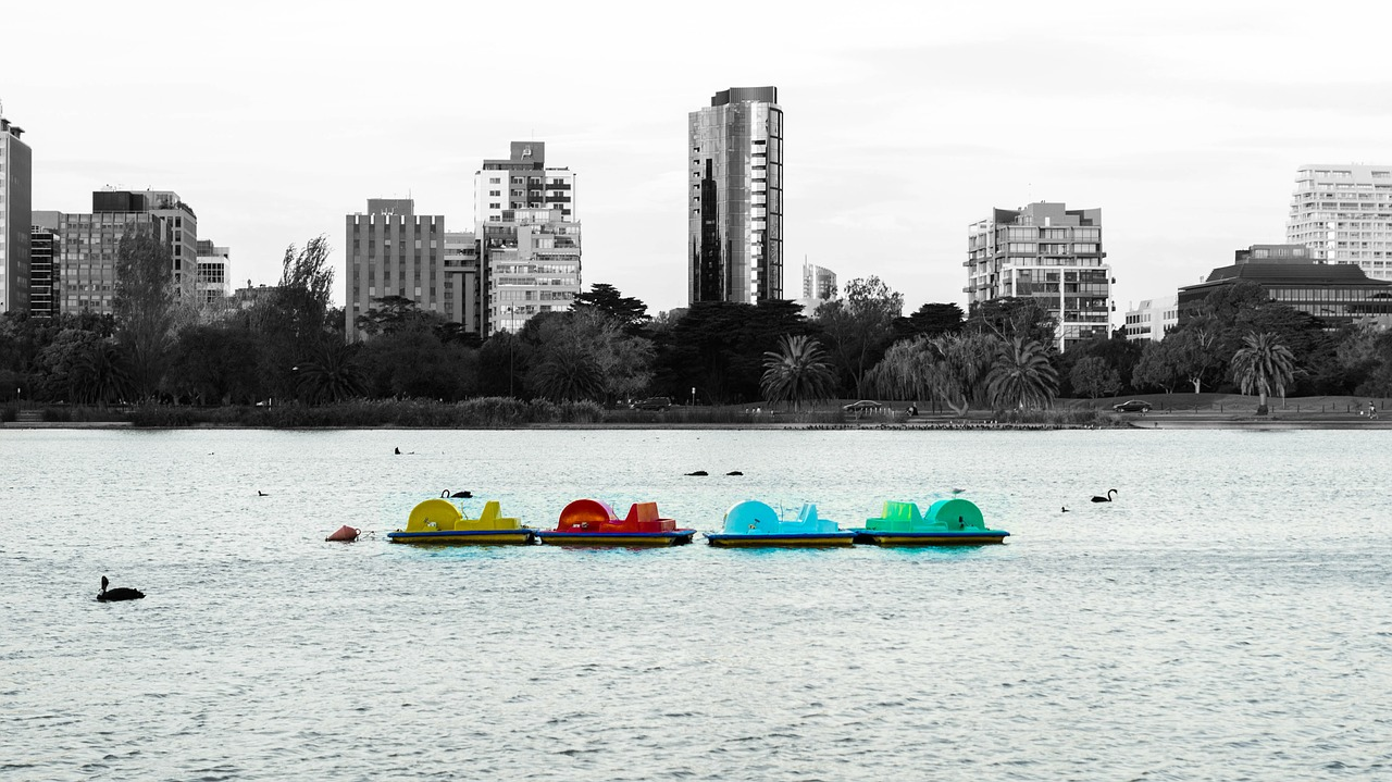 paddle boats,lake,paddle boat,paddle,boat,city,black and white,albert park,melbourne,australia,water,colour pop,colour,yellow,red,color,colours,blue,green,free pictures, free photos, free images, royalty free, free illustrations