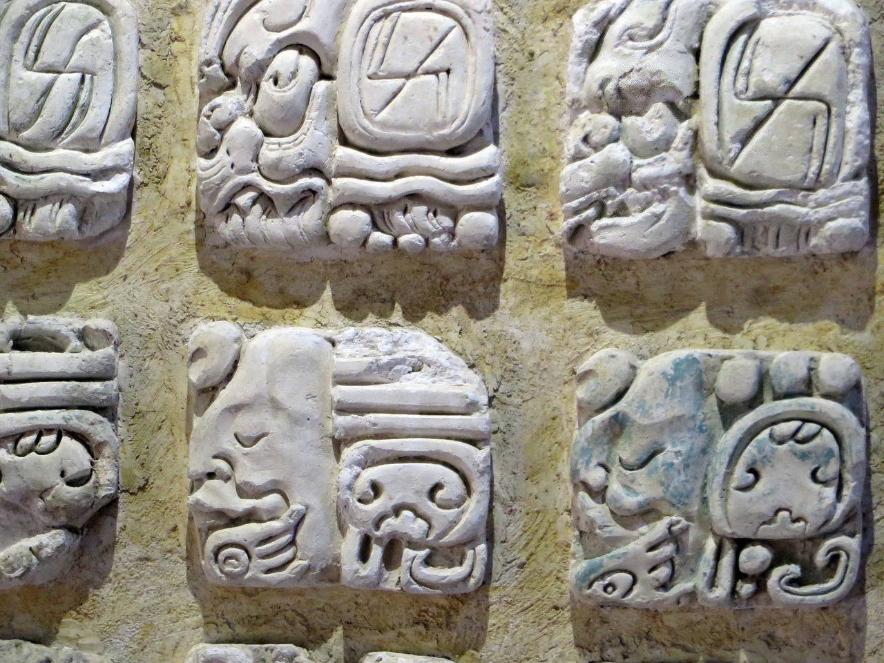 palenque museum mayan glyphs free photo