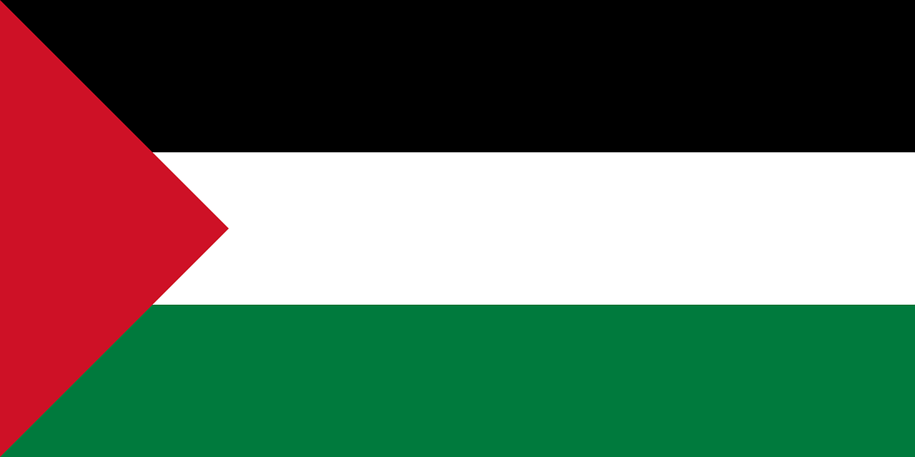 palestine flag palestinian free photo