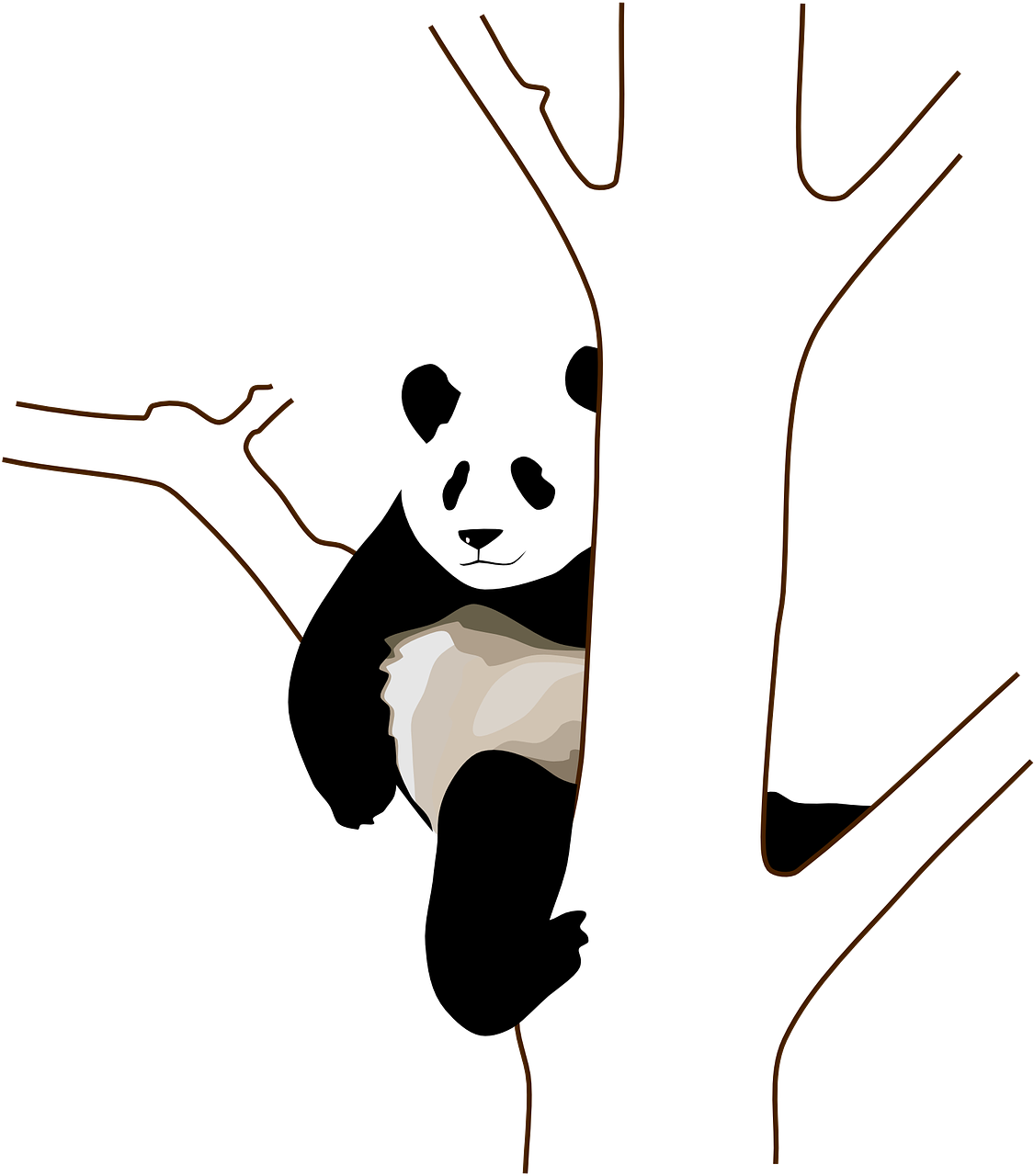 panda,tree,branch,sitting,climb,wild,bear,black and white,wildlife,animal,china,habitat,free vector graphics,free pictures, free photos, free images, royalty free, free illustrations, public domain