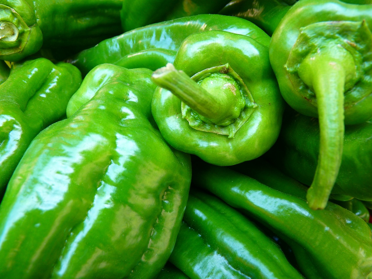 paprika vegetables green free photo
