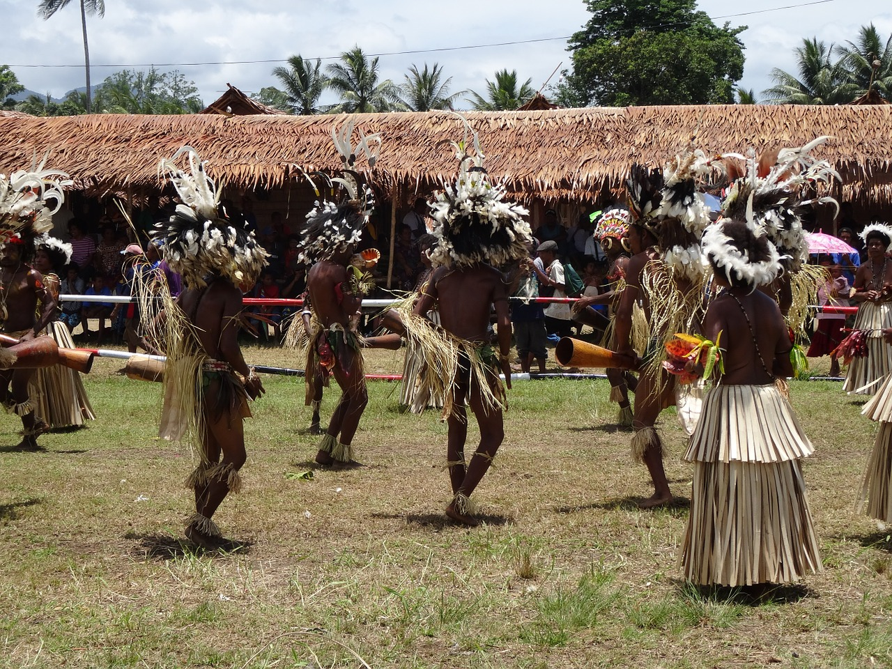 papua new guinea celebration dancing free photo