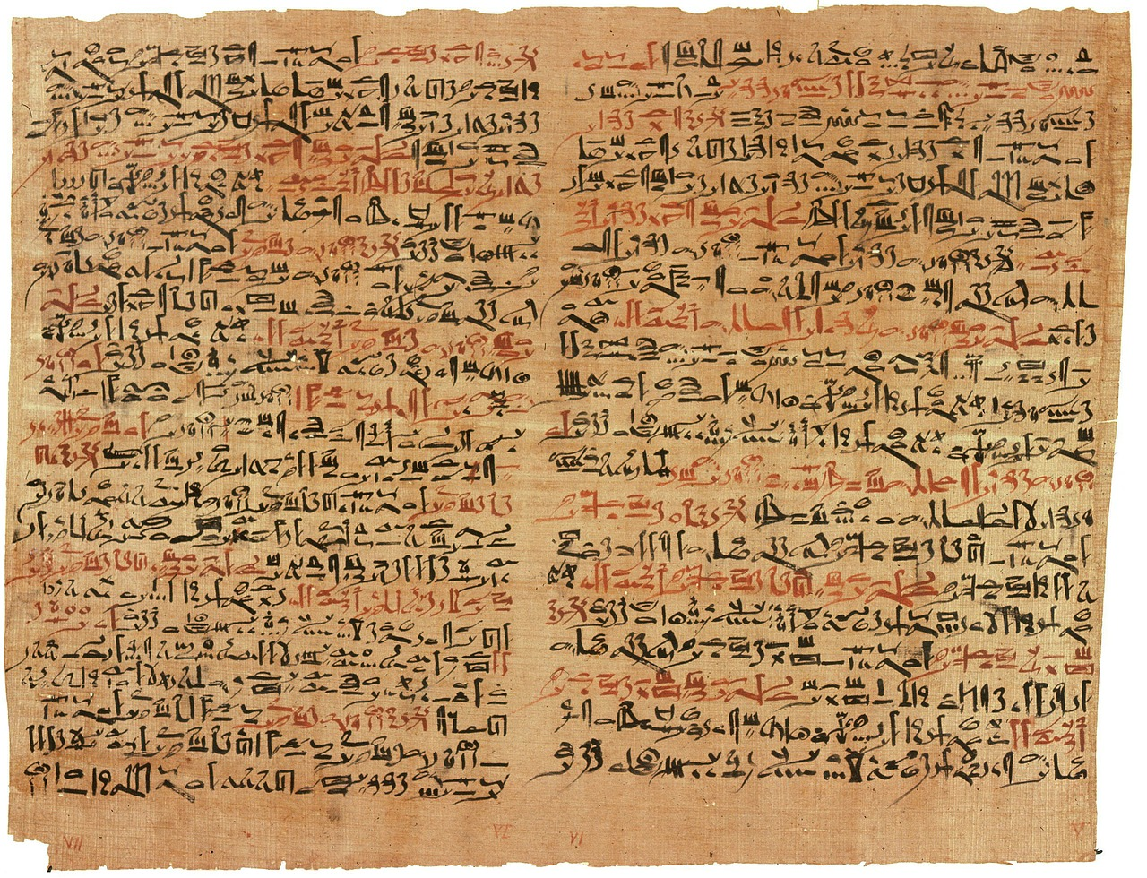 papyrus hieroglyphics ancient egyptian free photo