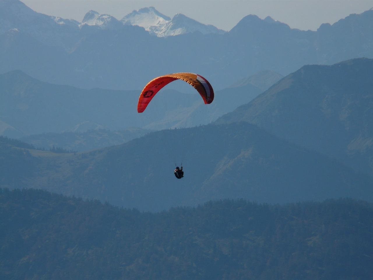 paraglider fly flight free photo
