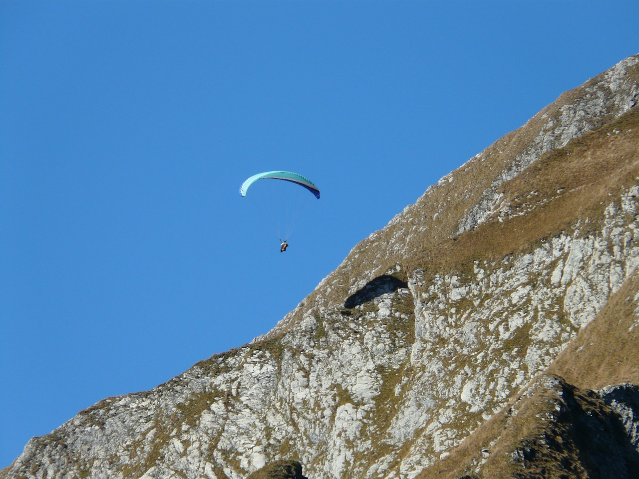 paraglider paragliding fly free photo