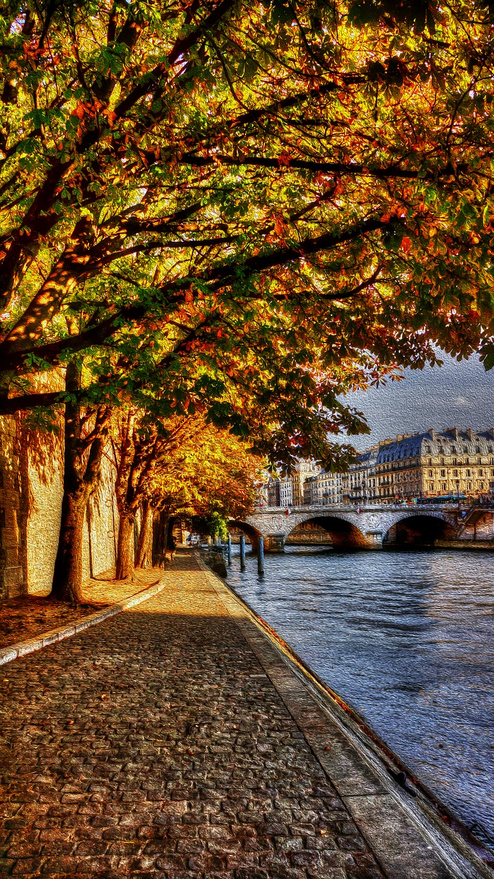 paris seine promenade free photo