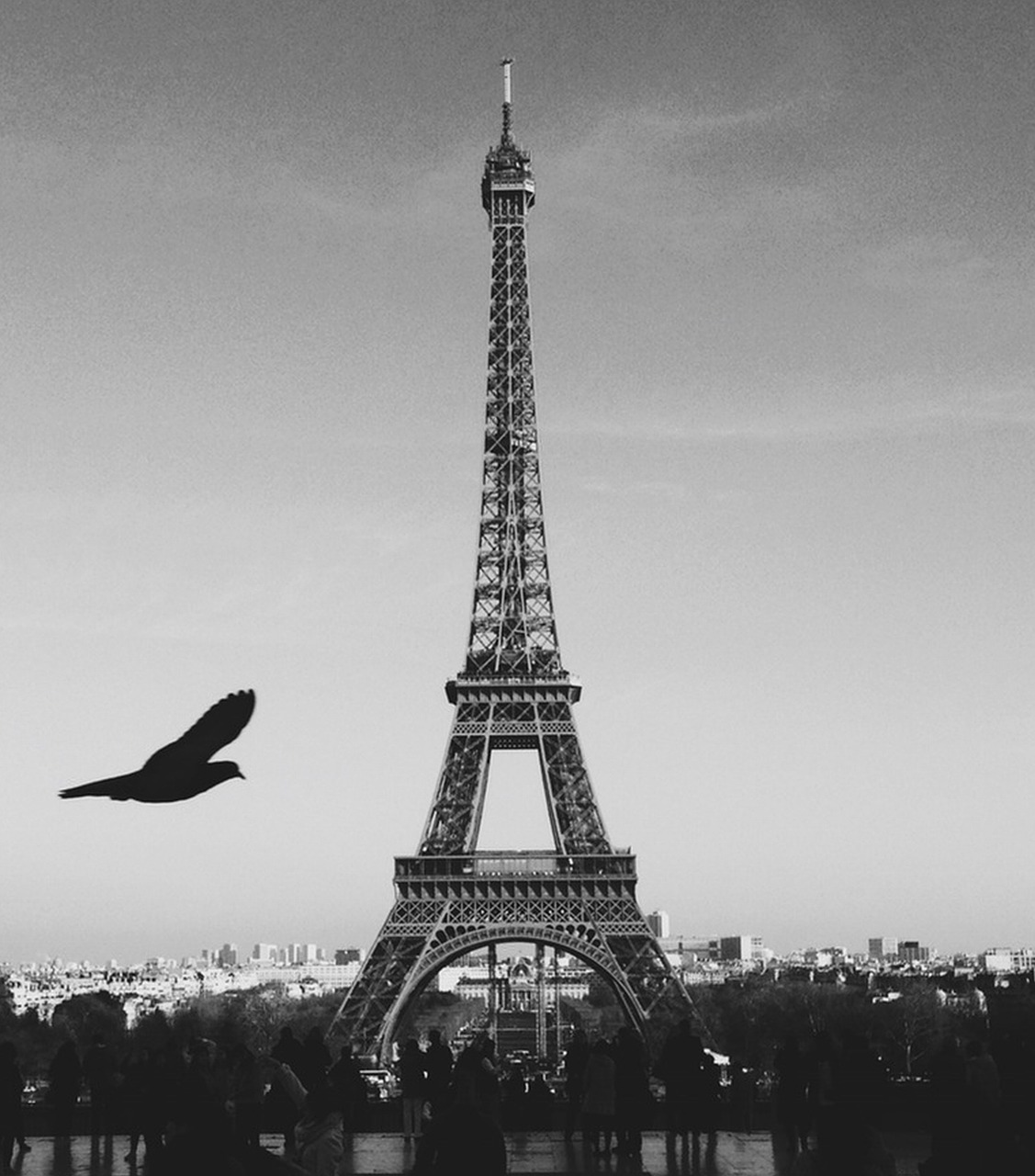 paris france eiffel tower free photo