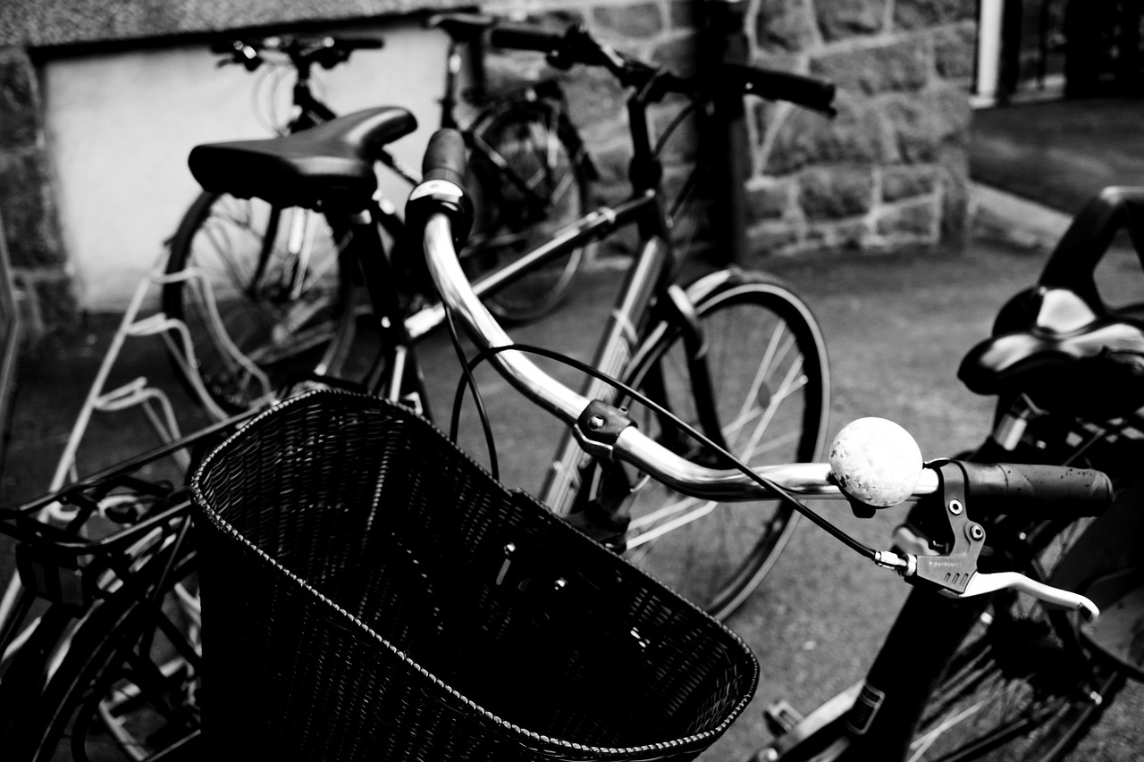 park cycle basket staring wheel free photo
