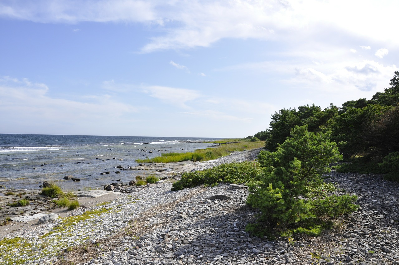 pebble beach gotland water free photo