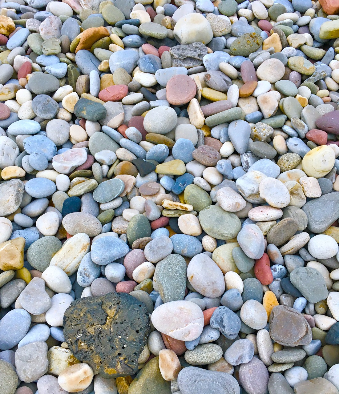 pebbles seashore rocks free photo