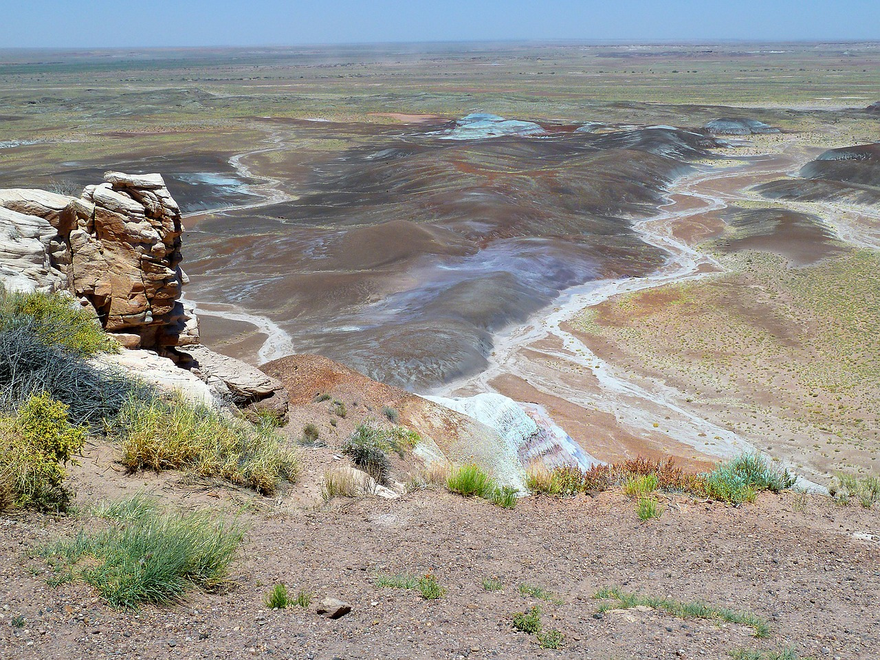 petrified forest national free photo
