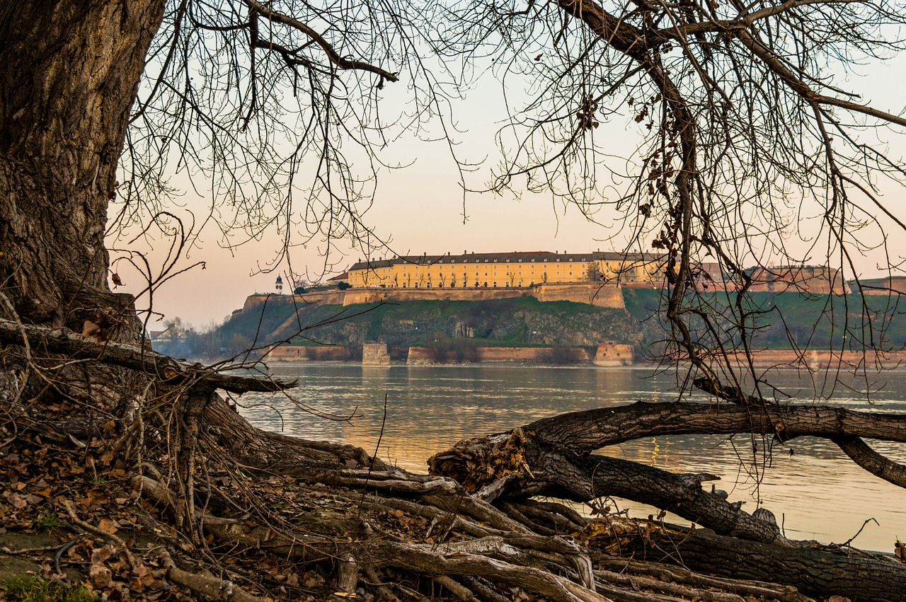 petrovaradin fortress danube free photo