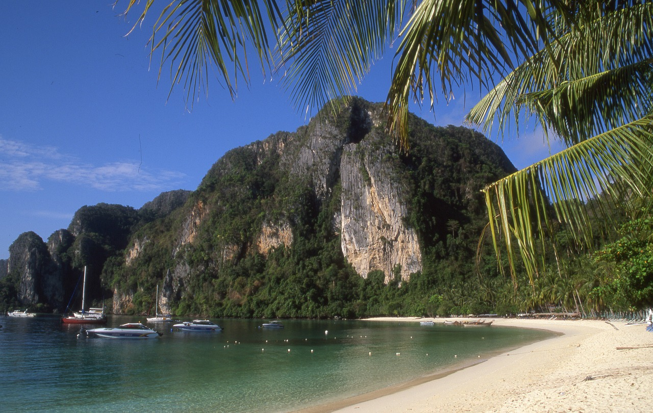 phi phi island thailand free photo