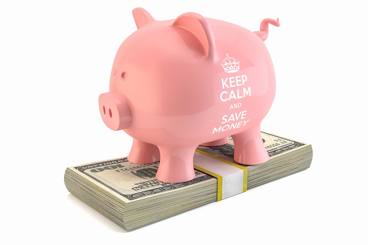 piggybank dollar savings free photo