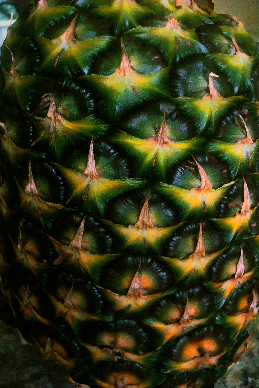 pineapple close-up detail free photo
