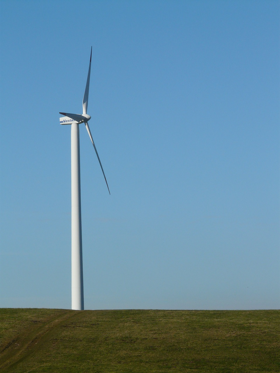 pinwheel wind turbine wind energy free photo