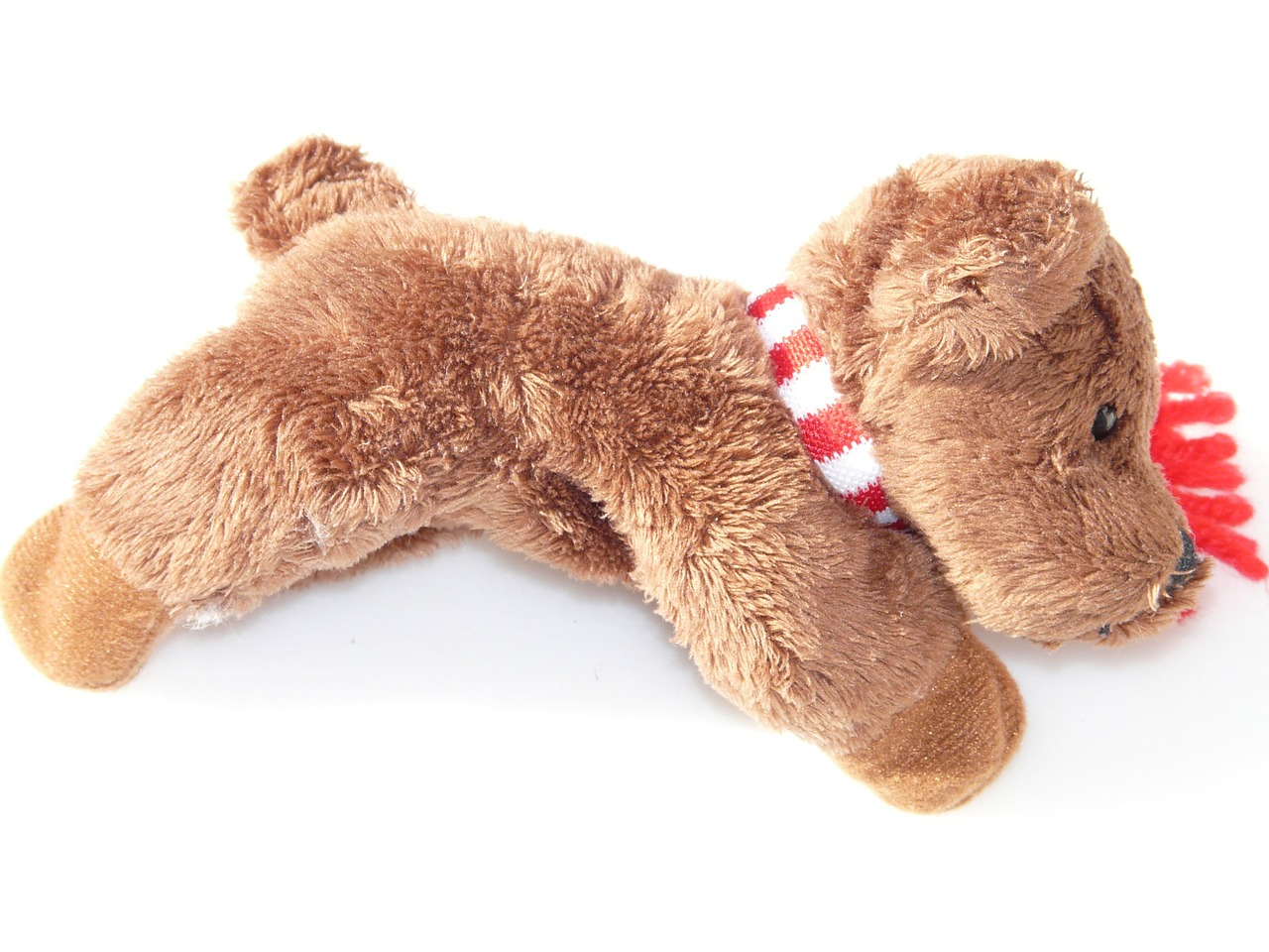 plush dog soft toy animal free photo