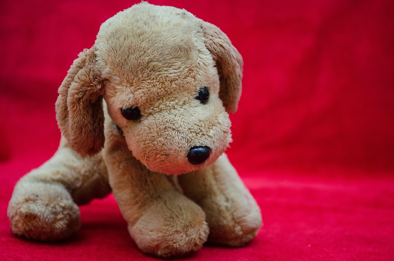 plush toys puppy soft free picture