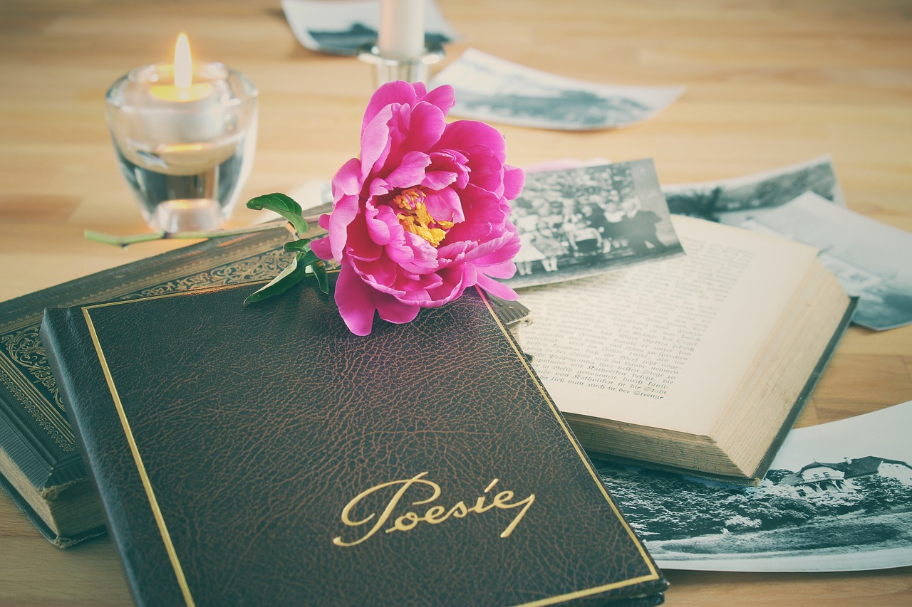 poetry album  book  leather free photo