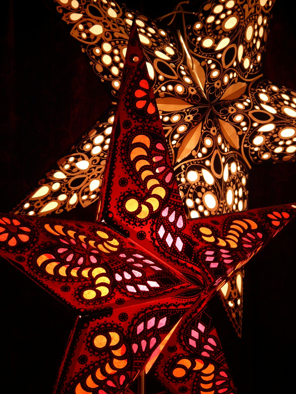 poinsettia star christmas free photo