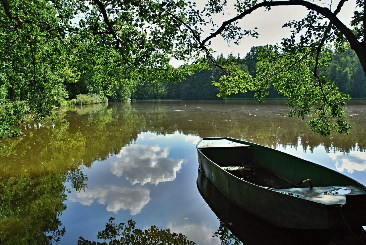 pond water rowboat free photo