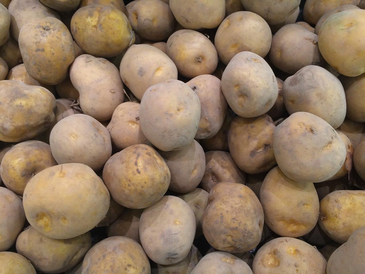Potato,pile up,fruit,seiyu ltd,living - free photo from