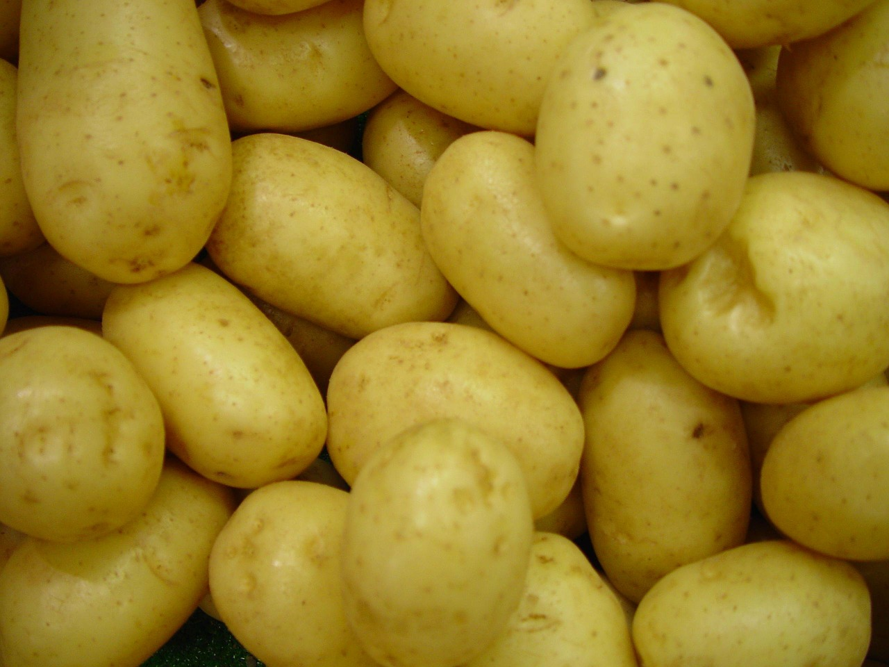 potatoes,vegetables,raw,uncooked,frisch,vegetarian,potato,food,ingredient,eat,root,free pictures, free photos, free images, royalty free, free illustrations, public domain