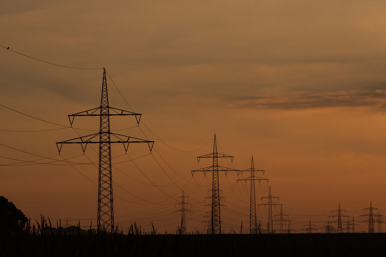power lines,pylons,power poles,current,cable,power line,power supply,sunset,sky,landscape,nature,light,mast,bird,orange,free pictures, free photos, free images, royalty free, free illustrations, public domain
