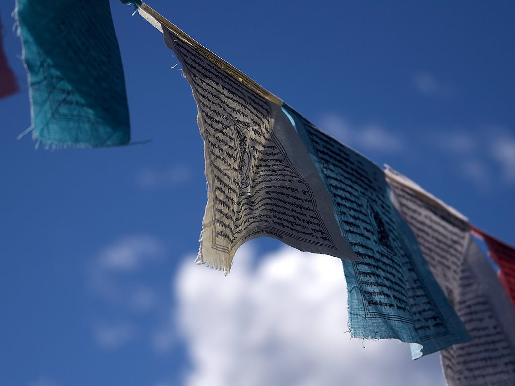 prayer flags buddhism wind free photo