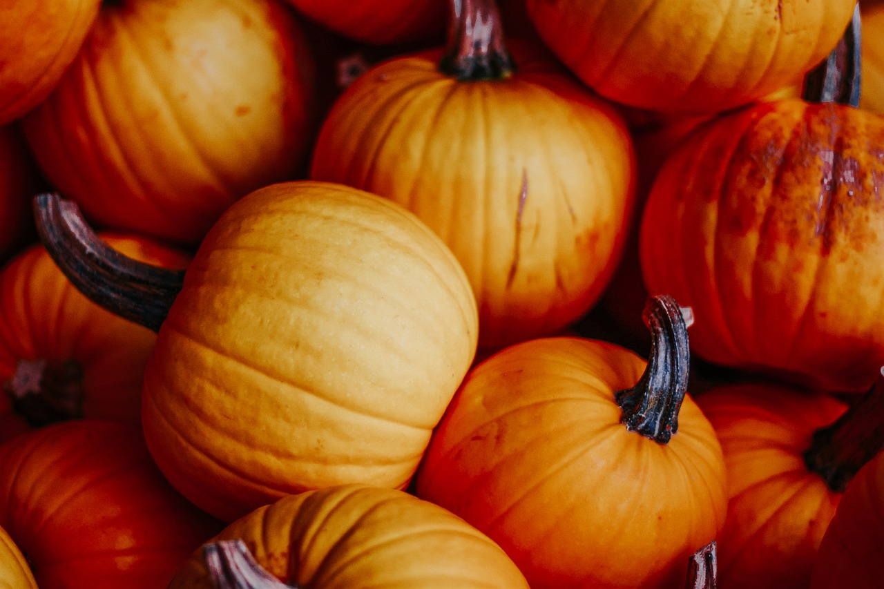 pumpkins  autumn  decoration free photo
