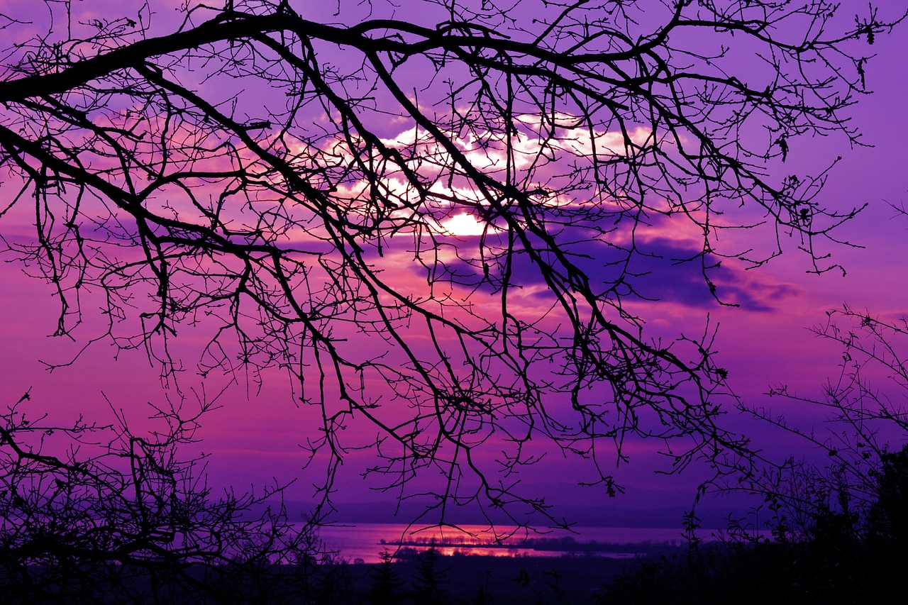 Purple Sunset Violet Sunset Landscape Nature Free Image From Needpix Com