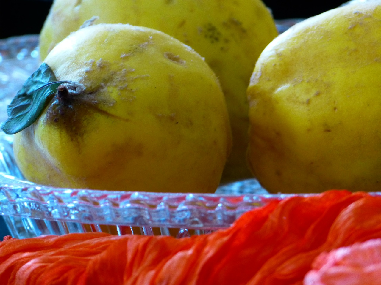 quince fruit pome fruit free photo