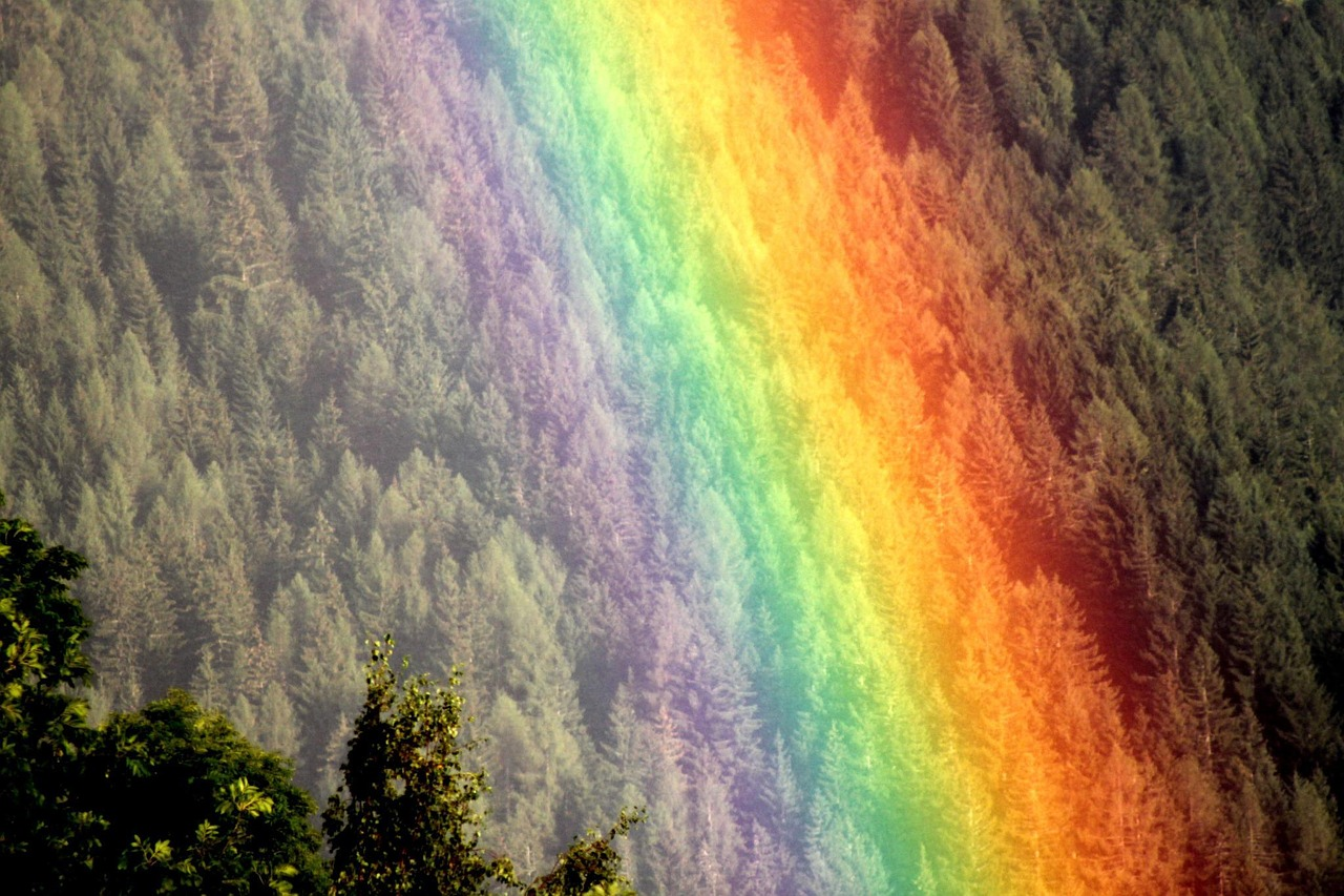 rainbow mood natural spectacle free photo
