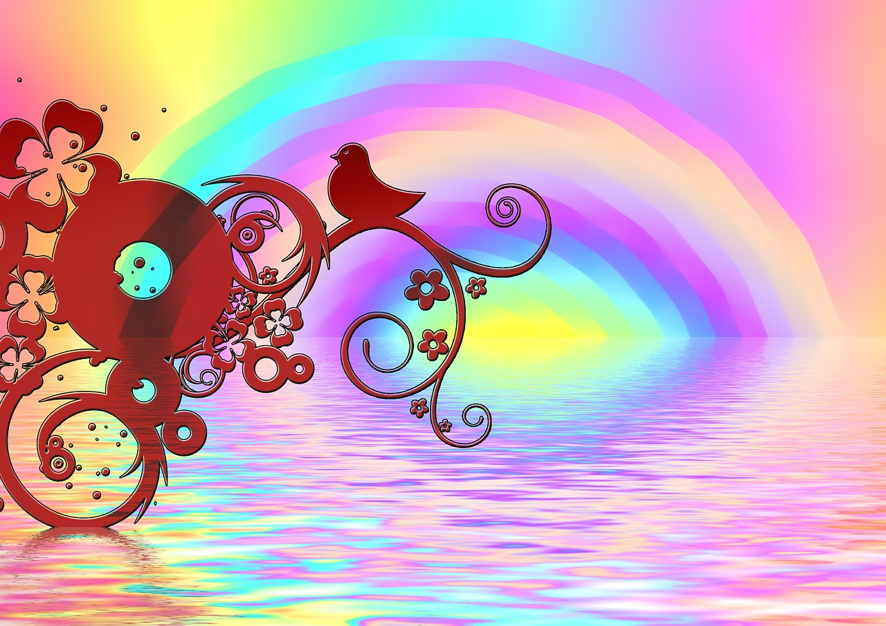 rainbow bird color free photo