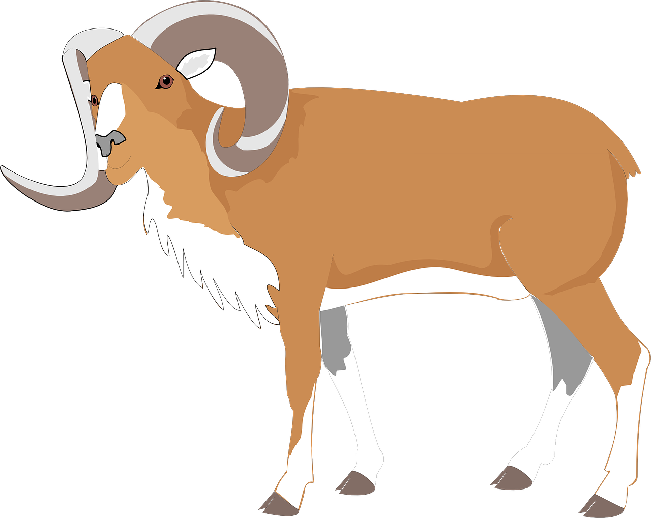 ram goat brown free photo
