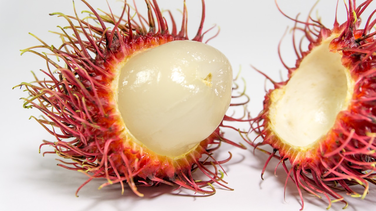 rambutan fruit background free photo