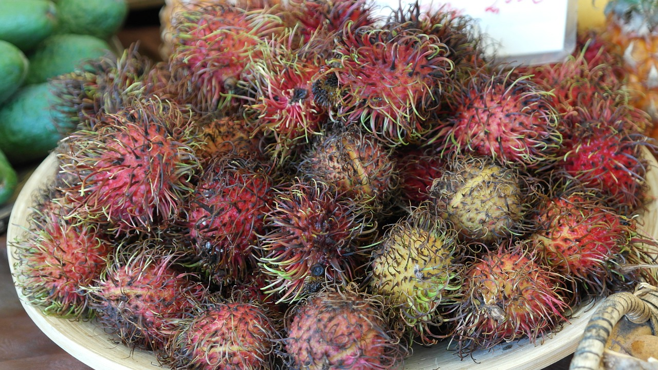 rambutan,fruits,fruit,delicious,healthy,vitamins,fruity,ripe,free pictures, free photos, free images, royalty free, free illustrations, public domain