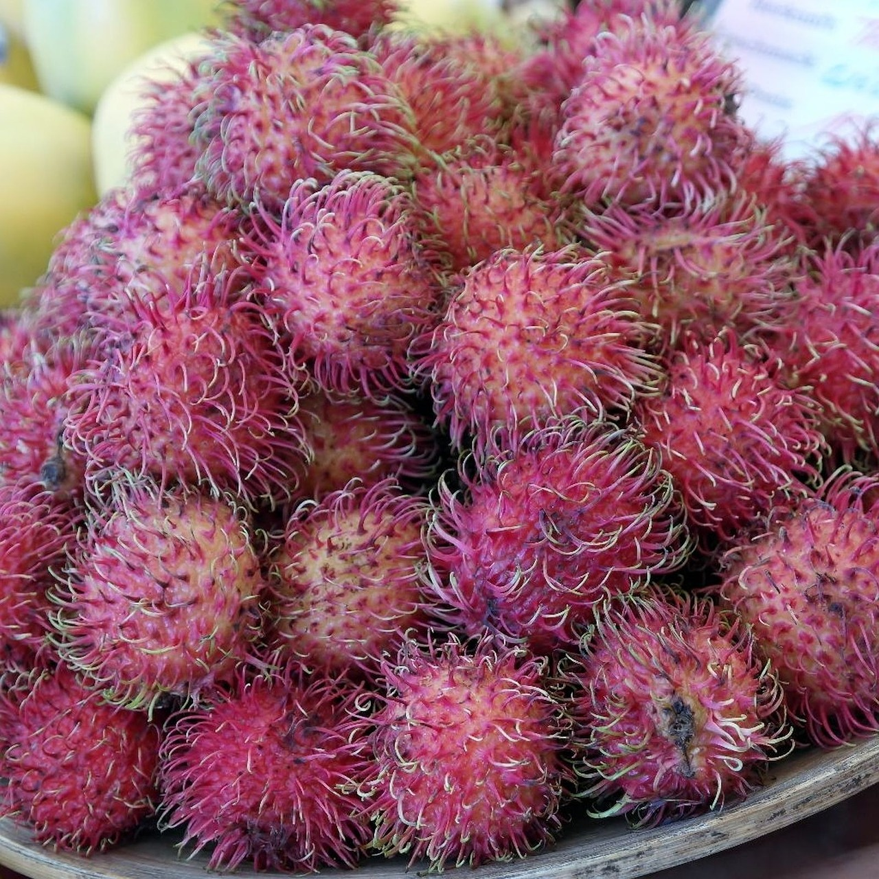 rambutan fruits fruit free photo
